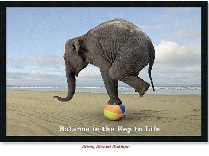 Your Lack of Balance Disturbs Me